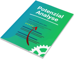 Potenzial Analyse SEO Buch Cover