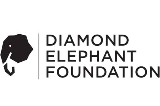 Logodesigner Berlin Foundation